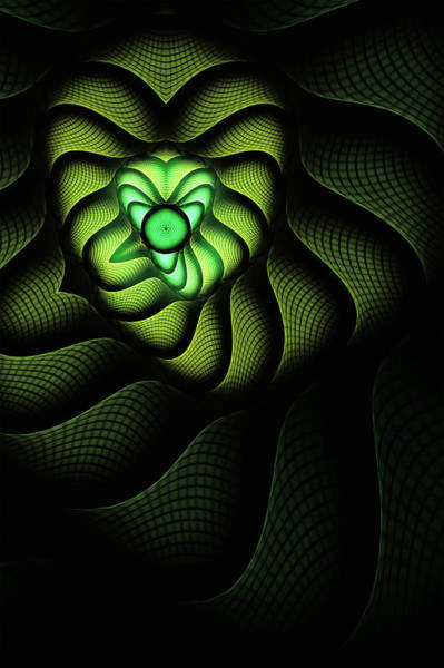 Reptiles Digital Art - Cobra by John Edwards