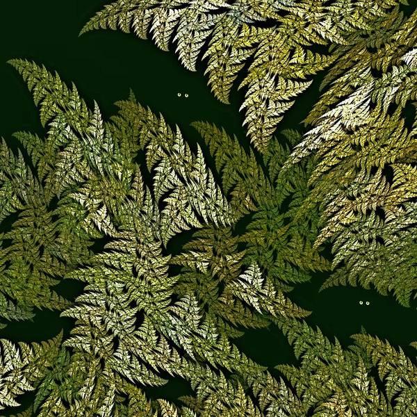Digital Art - Fractal Ferns Queensland by Doug Morgan