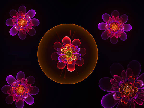 Digital Art - Fractal Flowers by Ernst Dittmar