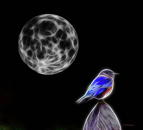 Photograph - Fractal Moon And Bluebird by Ericamaxine Price