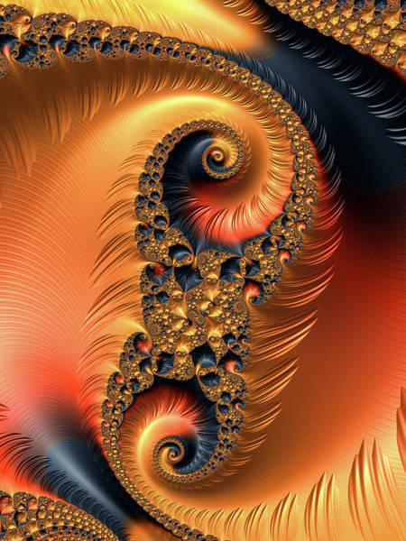 Digital Art - Fractal Spirals With Warm Colors Orange Coral by Matthias Hauser
