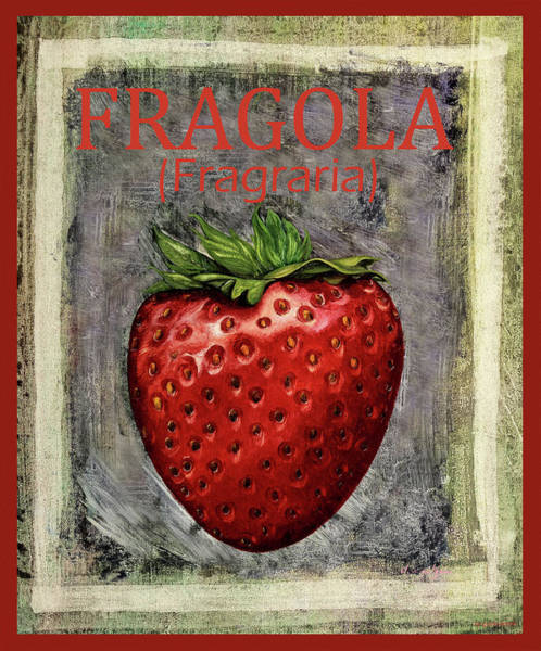 Strawberry Painting - Fragraria by Guido Borelli
