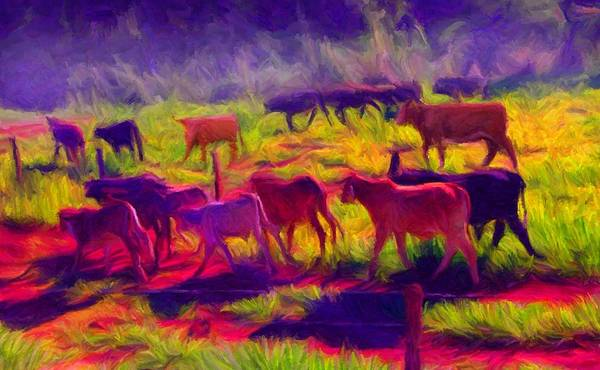 Digital Art - Franca Cattle 1 by Caito Junqueira