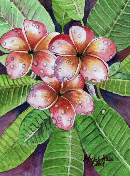 Wall Art - Painting - Frangipani Trio by Michele Ross