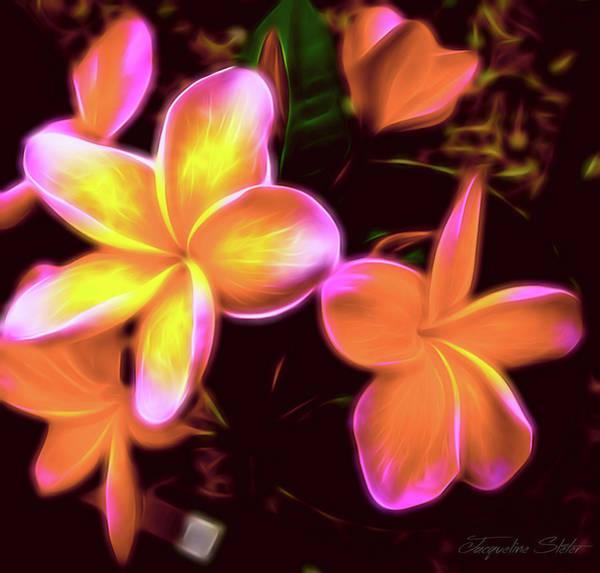 Digital Art - Frangipanis On The Glow by Jacqueline Sleter