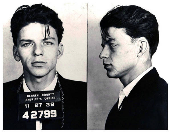 Albert Wall Art - Painting - Frank Sinatra Mug Shot Horizontal by Tony Rubino