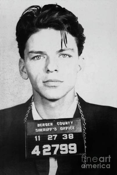 Albert Wall Art - Photograph - Frank Sinatra Mugshot by Jon Neidert