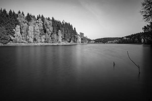 Photograph - Frankenteich - B/w Version by Andreas Levi