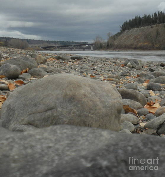 Photograph - Fraser River by Vivian Martin