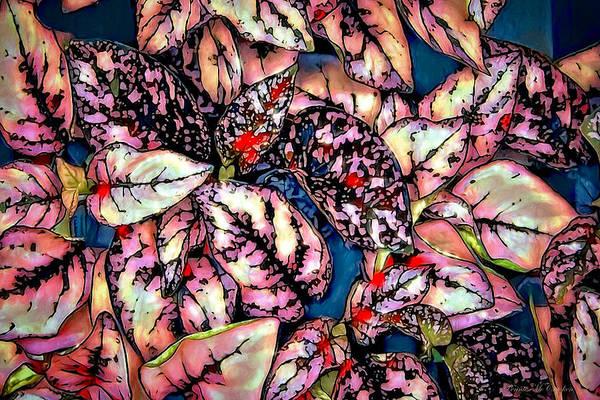 Digital Art - Freckle Face by Pennie McCracken