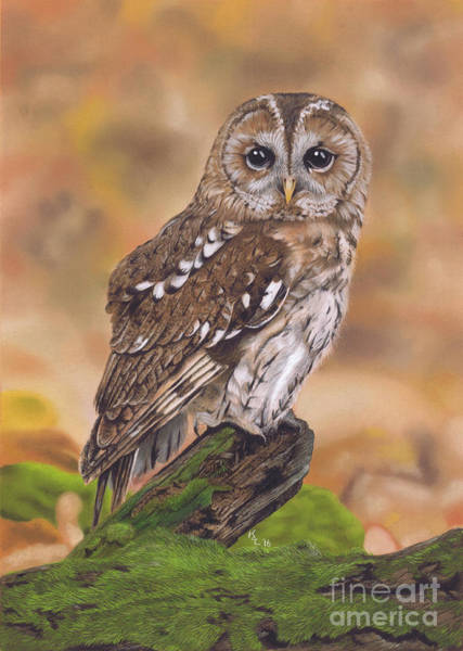 Painting - Free As A Bird by Karie-ann Cooper