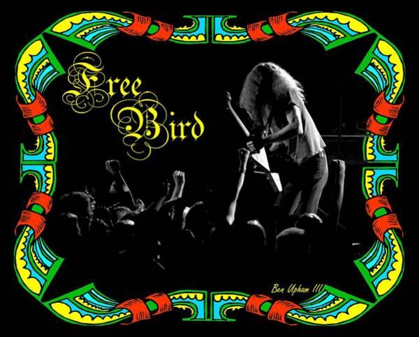 Photograph - Free Bird by Ben Upham