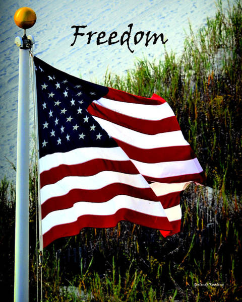 Photograph - Freedom by Gerlinde Keating - Galleria GK Keating Associates Inc