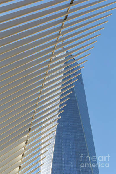 Photograph - Freedom Tower And Oculus IIi by Clarence Holmes