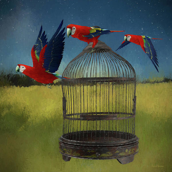 Painting - Freeing The Macaws - Painting by Ericamaxine Price