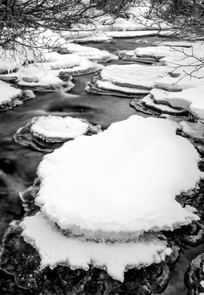 Photograph - Freezing Up by Tim Newton