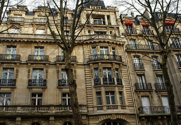 Photograph - French Architecture In Paris by Miguel Winterpacht