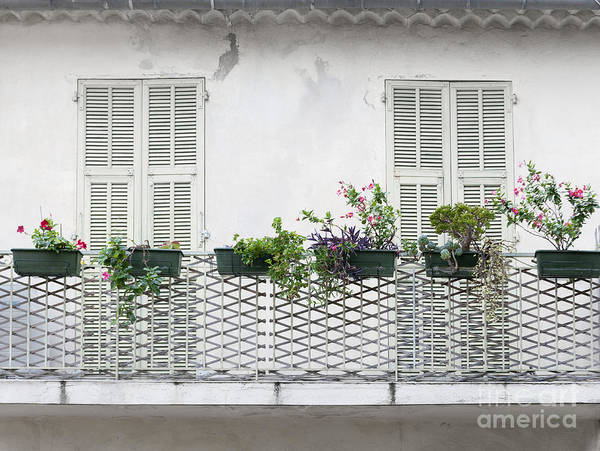 Wall Art - Photograph - French Balcony With Shutters by Elena Elisseeva
