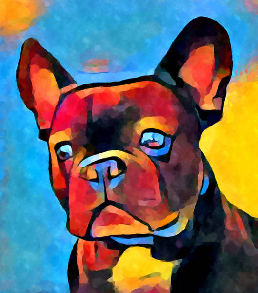 Wall Art - Painting - French Bulldog by Chris Butler