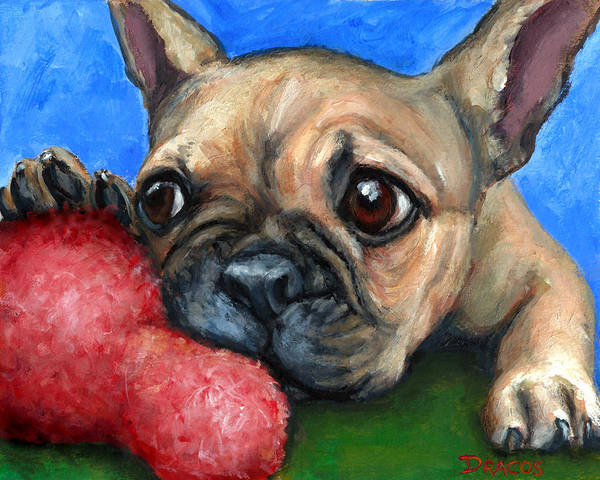 French Bulldog Painting - French Bulldog Puppy With Toy by Dottie Dracos