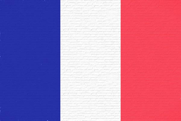 Francaise Digital Art - French Flag Graffiti by Roy Pedersen