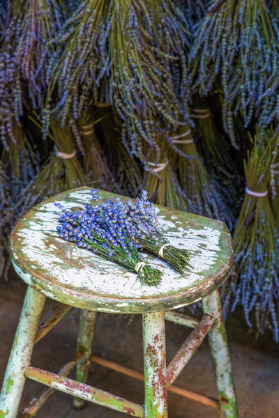 Photograph - French Lavender Bundles by Susan Candelario