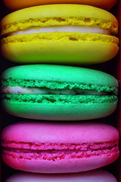 Filling Photograph - French Macaroons by Garry Gay