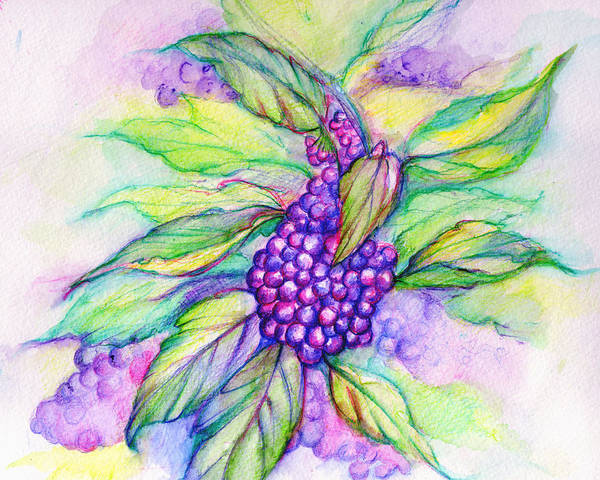 Painting - French Mullberry by Nada Meeks