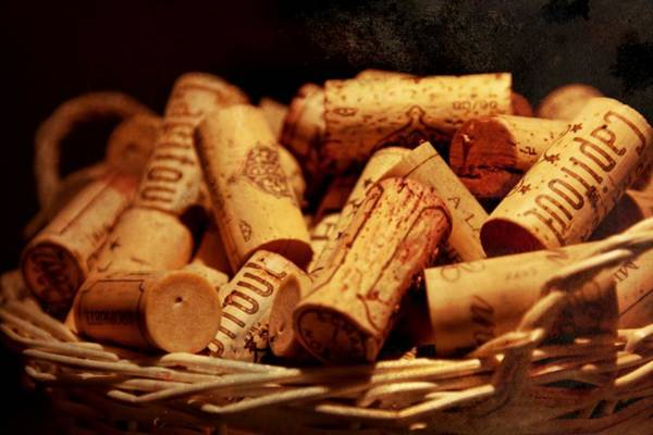 Photograph - French Wine Bottle Corks by Tatiana Travelways