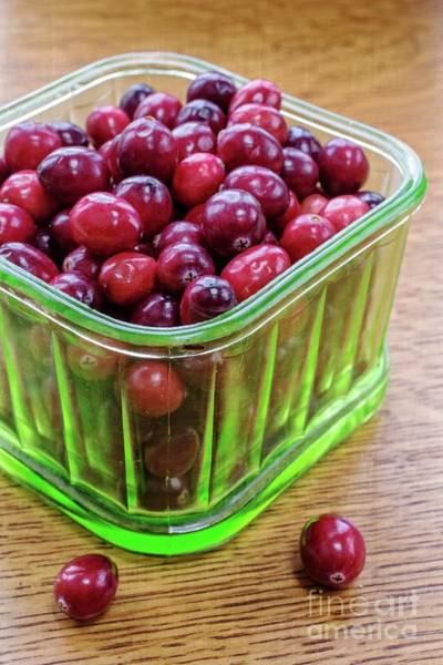 Photograph - Fresh Cape Cod Cranberries by Edward Fielding