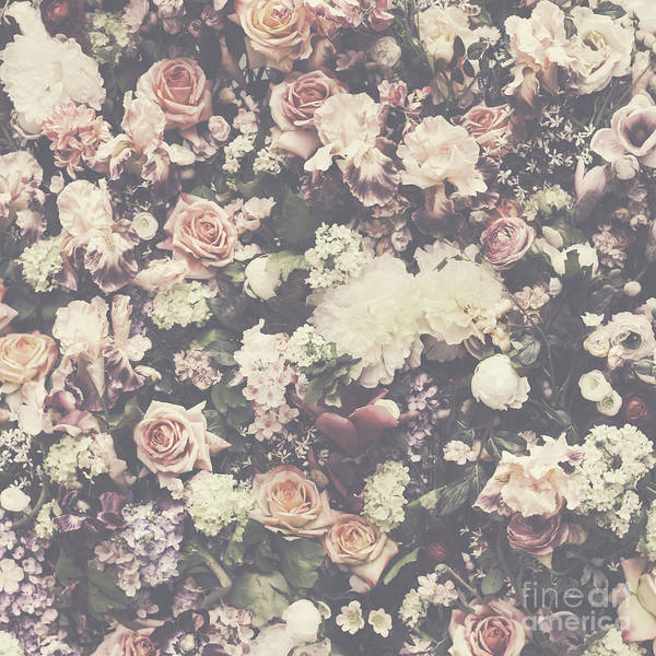 Receptions Photograph - Fresh Flower Pattern Background by Jelena Jovanovic