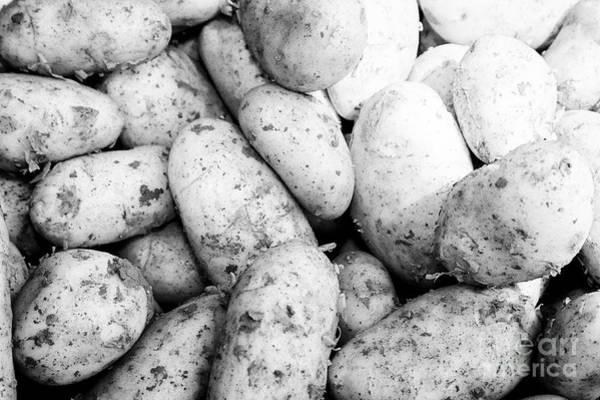 Wall Art - Photograph - Fresh New Irish Potatoes On Display On A Greengrocers Food Stall In The Uk by Joe Fox