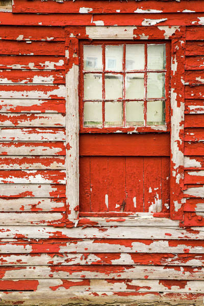 Wall Art - Photograph - Fresh Paint Needed by Karol Livote