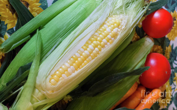 Photograph - Fresh Produce, Brunswick, Maine #60231 by John Bald