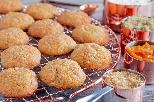 Photograph - Fresh Pumpkin Spice Cookies And Ingredients by Teri Virbickis