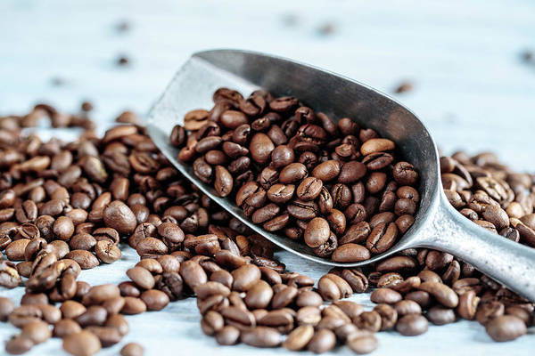 Strong Photograph - Fresh Roasted Coffe Beans by Nailia Schwarz