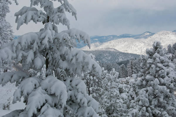 Photograph - Fresh Snow In The Colorado Front Range by Cascade Colors