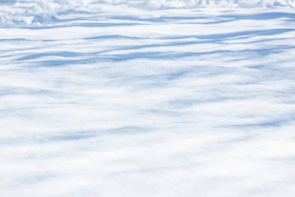 Wall Art - Photograph - Fresh Snow by Iris Richardson