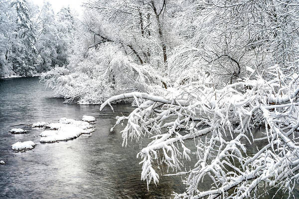 Photograph - Fresh Snow Williams River by Thomas R Fletcher