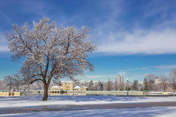 Mile High City Photograph - Fresh Spring Snow - City Park, Denver, Colorado by Bridget Calip