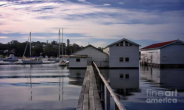 Swan Boats Photograph - Fresh Water Bay by Carolyn Parker