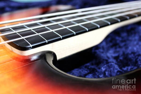 Photograph - Fretless by Todd Blanchard