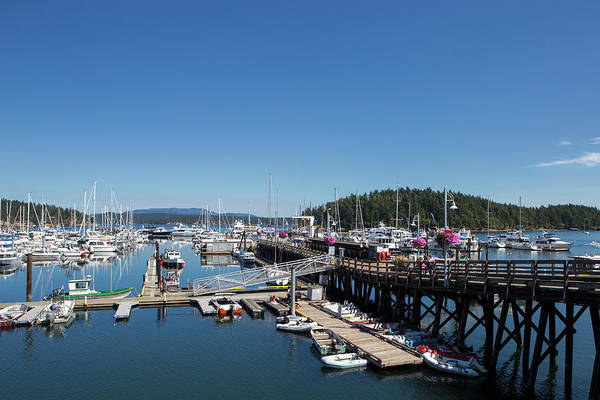 Wall Art - Photograph - Friday Harbor Marina by Stephanie McDowell