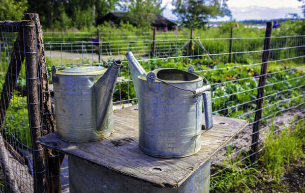 Wall Art - Photograph - Friends - Alaska Watering Cans by Madeline Ellis