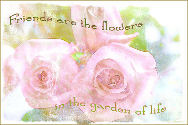 Photograph - Friends Are The Flowers by Eleanor Abramson