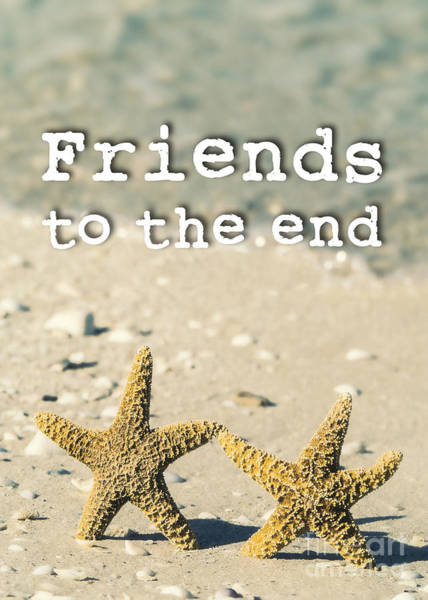 Partner Photograph - Friends To The End by Edward Fielding