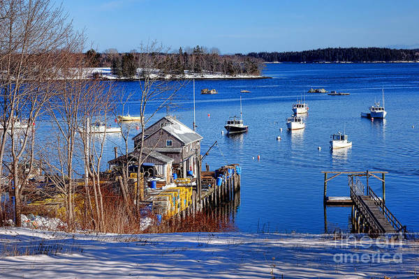 Photograph - Friendship Harbor In Winter by Olivier Le Queinec