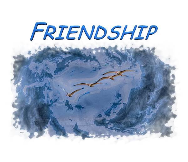 Photograph - Friendship by John M Bailey