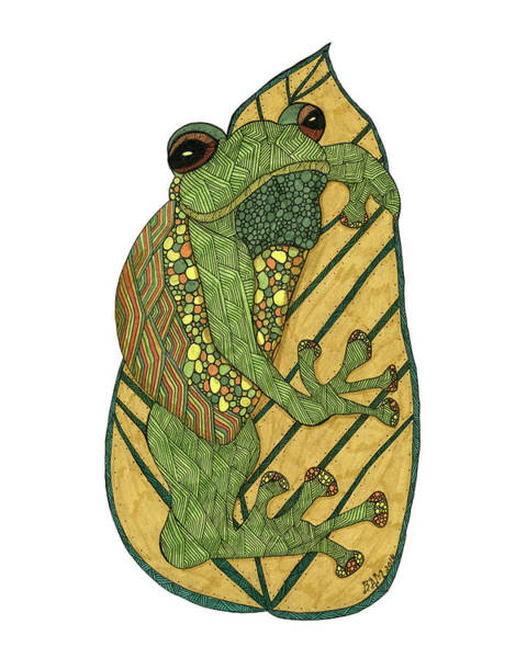 Drawing - Frog by Barbara McConoughey