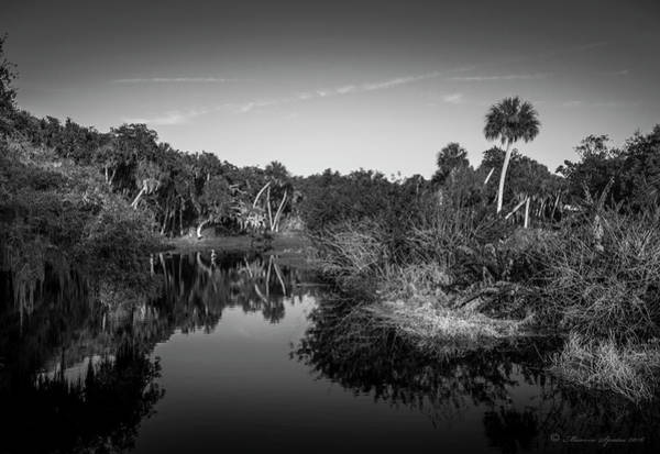 Water Lillies Photograph - Frog Creek 2 by Marvin Spates